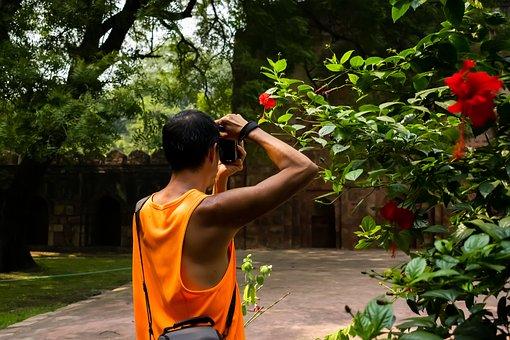 Photographer, Garden, Park, Delhi, Ancient, Greenery