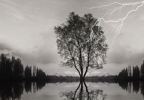 Storm, Lightning, Ray, Thunder, Nature, Trees