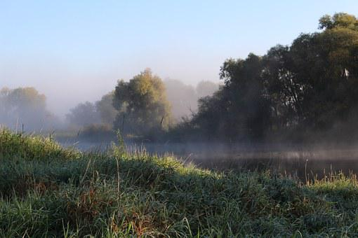 Nature, Morning Mist, Landscape, Fog, Mood, Sky, Sun
