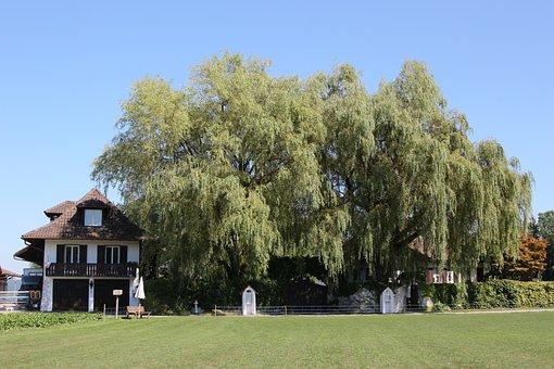Gorgeous Home, Rümlang, Canton Of Zurich