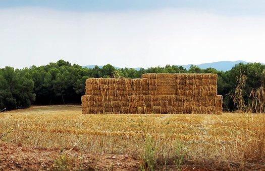 Landscape, Summer, Haystack, Straw, Straw Bale, Farm