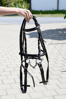 Bridle, Horse Bridle, Leather, Head Piece, Engl