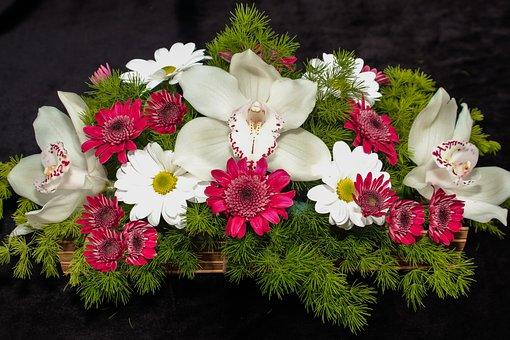 Basket, Flowers, Bouquet, Black, Background, Color