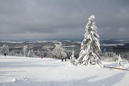 Winter, Snow, Landscape, Nature, Wintry, Snow Landscape