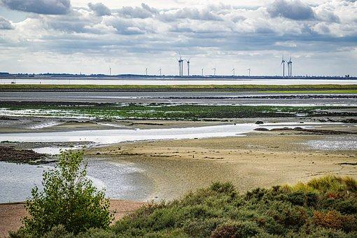 Schelphoeck, National Park, Oosterschelde, Netherlands