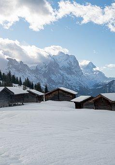 Winter, Snow, Nature, Switzerland, Bern, Cold