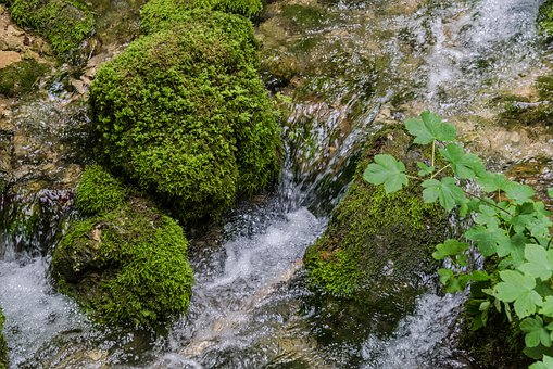 Water, Moss, Nature, Waterfall, Landscape, River