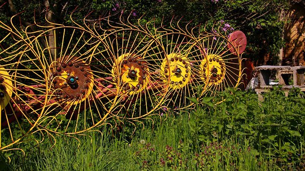 Meadow, Nature, Agriculture, Wheel, Wheels, Yellow