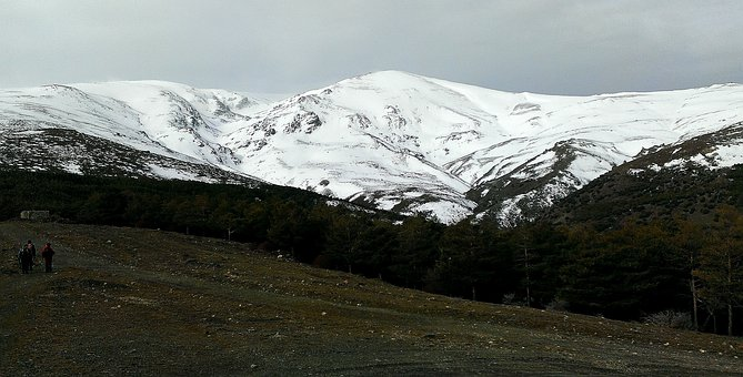 Sierra Nevada, Snow, Forest, Nature, Mountains, Crest