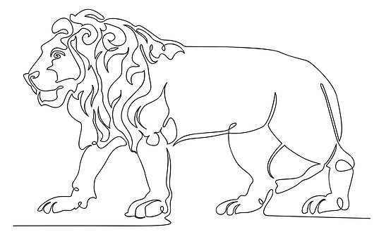 Lion, King, Single Line, Animal, Predator, Africa, Male