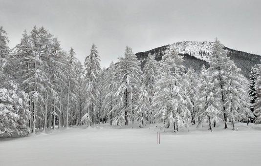 Austria, Far Right, Christmas, Snow, Trees, Mountains