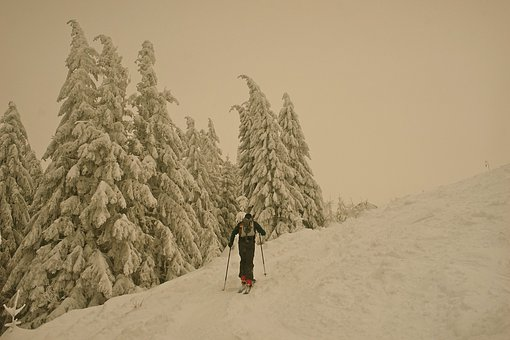 Backcountry Skiiing, Snow, Skiing, Ski, Wintry