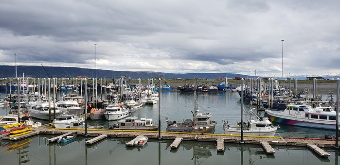Docks, Boats, Homer, Alaska, Nautical, Industry, Harbor