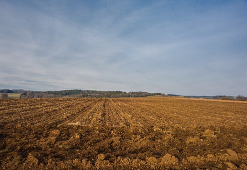 Arable, Agriculture, Field, Landscape, Nature, Harvest