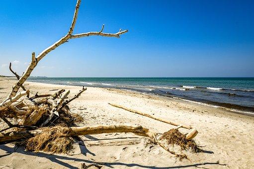 Beach, Of Course, Sea, Nature, Sand, Ocean, Landscape