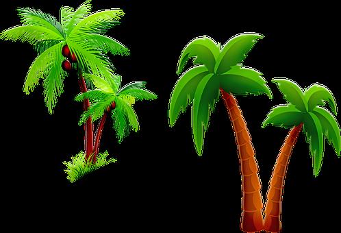 Palm Tree, Cartoon Palm, Two Palms