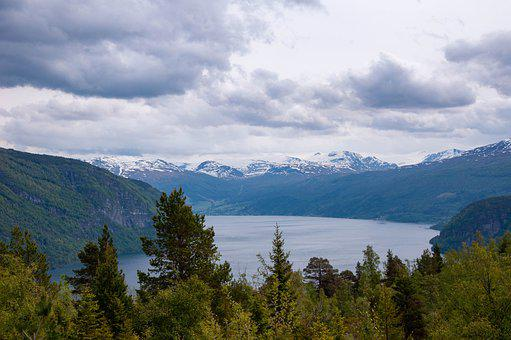 Fjord, Water, Sea, Ocean, Mountain, Forest, Tree