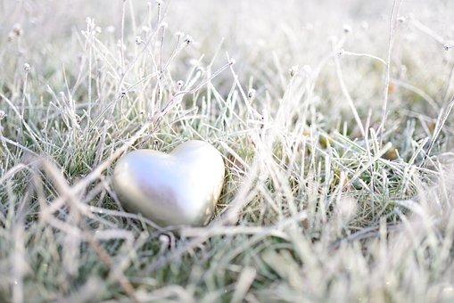 Heart, Meadow, Hoarfrost, Grass, Frost, Frozen, Winter