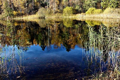 Lake, Water, Nature, Autumn, Mirroring, Reflection
