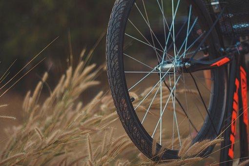 Bicycle, Molding, Cycling, Sports, Mountain Biking