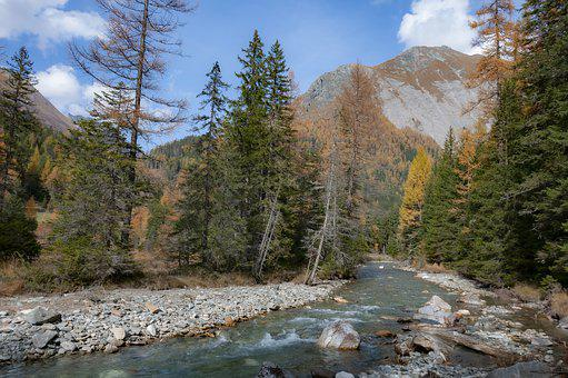 Alps, Creek, Nature, Water, Landscape, River, Europe