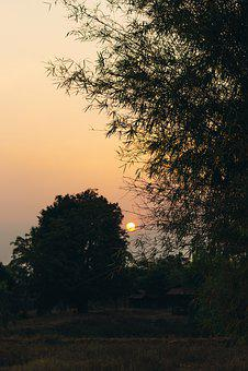 Sunlight, Nature, Sunrise, The Landscape, Tree, Pa