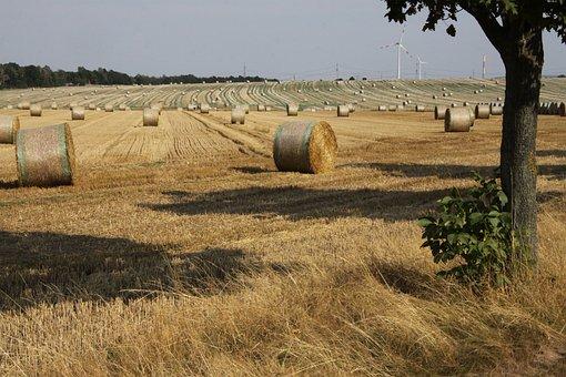 Burgstädt, Arable, Hay Bales, Field, Straw Bales