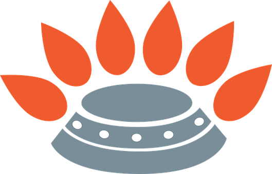 Stove, Burner, Oven, Hotplate, Gas, Appliance, Heat