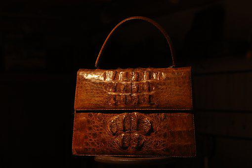 Bag, Crocodile, Cook, Animal, Chic, Store, Showcase