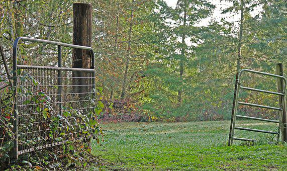 Gates, Pasture, Gate, Fence, Farm, Rural, Field, Old