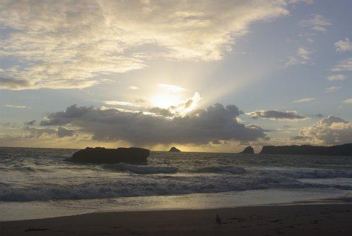 New Zealand, Beach, Sea, Sky, Nature, Water, Ocean