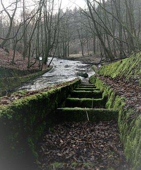 Bach, Dam, Old, Mechanism, Overflow, Moss