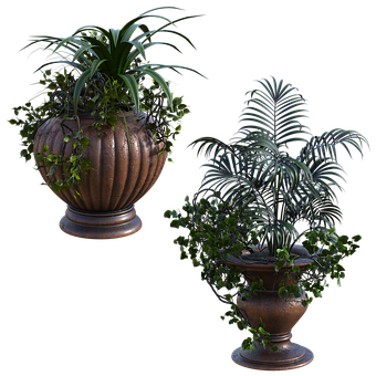 Outdoor, Planter, Plants, Foliage, Green, Garden, 3d