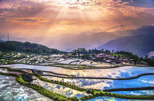 Terraces, Yunnan, China, Sunrise