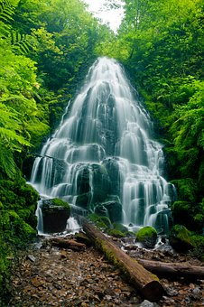 Waterfall, Forest, Creek, Nature, Water, Landscape