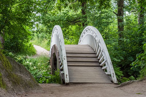 Bridge, Park, Wood, White Paint, Trees, Railing