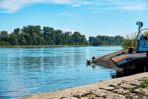 Rhine, River, Ferry, Investors, Dock, Transfer