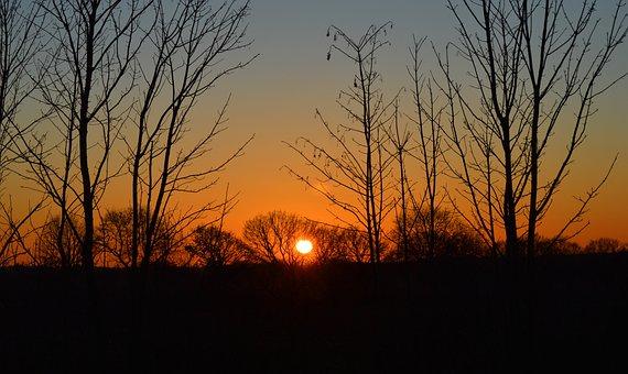 Sunset, Abendstimmung, Landscape, Trees, Silhouette