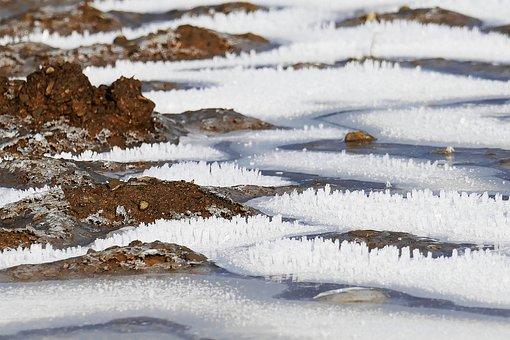 Frost, Frozen, Arable, Hoarfrost, Cold, Pattern