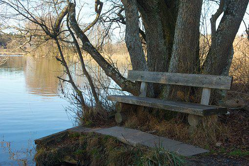 Bench, Seat, Bank, Rest, Out, Waters, Lake, Autumn