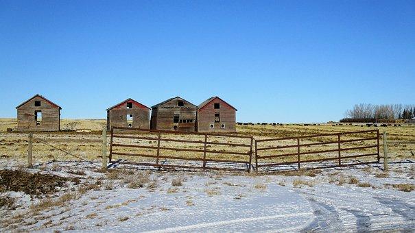 Old Buildings, Grain Storage, Country, Field, Landscape