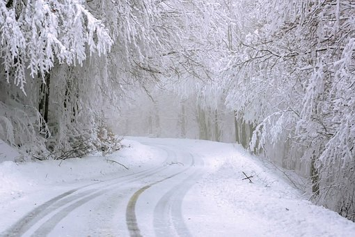 Road, Trees, Snow, Cold, Ice, Frost, Wintry, Winter