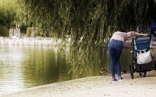 Landscape, Park, Nature, Lake, Woman, Parent, Young