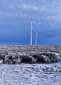 Snow, Nature, Winter, Landscape, Cold, Mountains, Horse