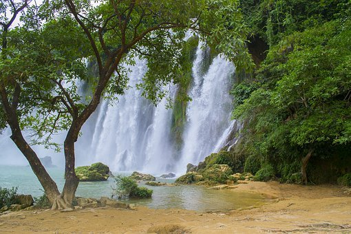 Vietnam, Waterfall, Tree, Paradise, Natural, Scenery