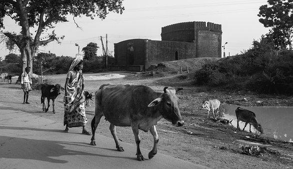 Black And White, India, Rural, People