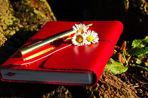 Journal, Red, Park, Autumn, Flowers, Yellow, Nature