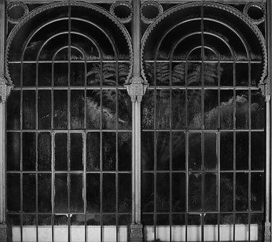 Window, Iron, Baroque, Structure, Pattern, Background