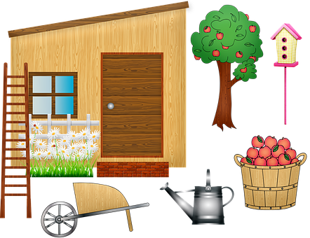 Garden Shed, Wheelbarrow, Ladder, Apple Tree