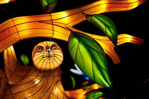 Chinese Lantern, Art, Festival, Atlanta, Olympic Park